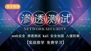 web安全/渗透测试/内网渗透/kali/白帽子/黑客/网络安全