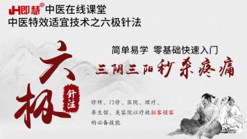 中医针灸培训之六极针法