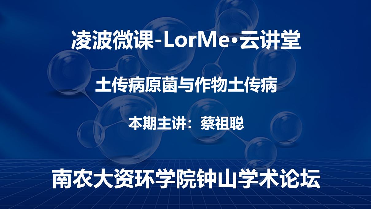 凌波微课-LorMe云讲堂第十三讲