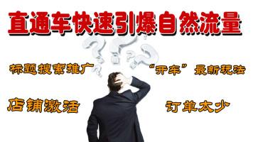 【实战者】拼多多直通车场景推广复盘营销策略核心技巧小白必学