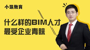 什么样的BIM人才最受企业青睐?