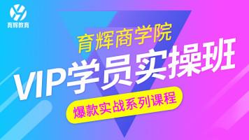 【育辉教育】淘宝运营VIP学员实操班