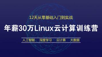 Linux云计算30万年薪训练营-12天零基础入门到实战