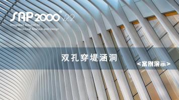 SAP2000案例演示:双孔穿堤涵洞