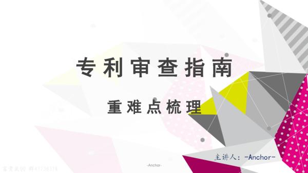 代言人详解审查指南蜜月版【专利代理人资格考试】