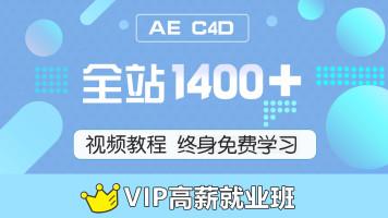 AEC4D网校 VIP就业班