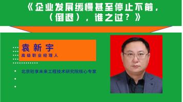 袁新宇——企业发展缓慢甚至停止不前,(倒退),谁之过?