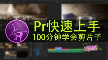 pr基础教程100分钟学会剪片子最新版Premiere2017基础速成课程