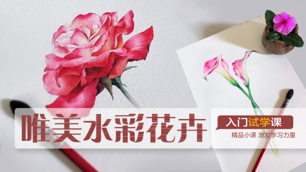【试学】唯美水彩花卉/画画/美术/绘画/色彩/水彩/油画棒
