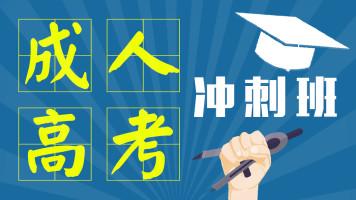成人高考考前冲刺班辅导课程