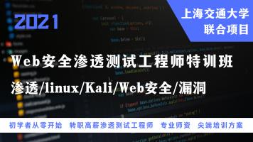 Web安全渗透测试工程师特训班(渗透/linux/Kali/Web安全/漏洞)