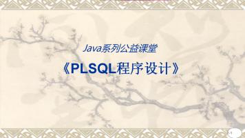 PLSQL程序设计