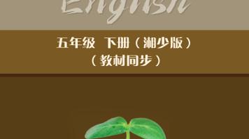 小学英语5B