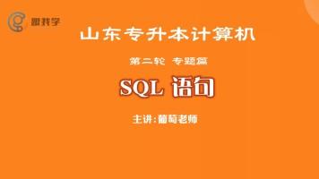 山东专升本 计算机 第二轮 专题篇  SQL语句
