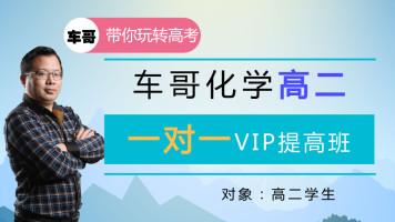 高二:一对一VIP提高班