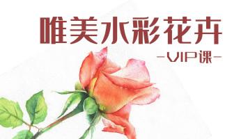 【VIP】唯美水彩花卉/美术/手绘/绘画/技法/写生/色彩/速写