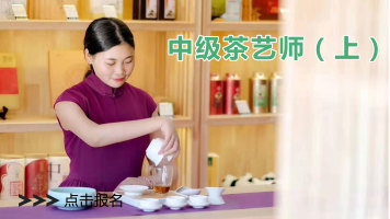 茶艺(师)实操培训课程—中级茶艺师教学视频(上)三集