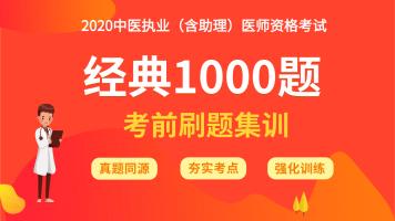 金英杰2020中医执业(含助理)医师经典1000题