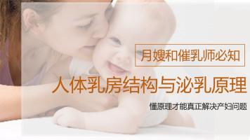 【免费试听课】喜月无痛催乳—泌乳原理