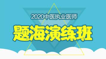 2020年中医执业医师-题海演练班