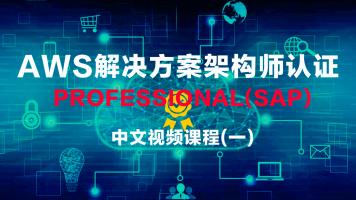 AWS解决方案架构师认证 Professional中文视频课程2020(一)
