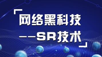 网络黑科技—Segment Routing(SR)/HCIA/HCIP/HCIE【东方瑞通】