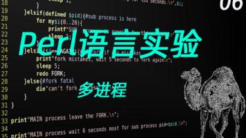 Perl语言编程实验6(多进程)