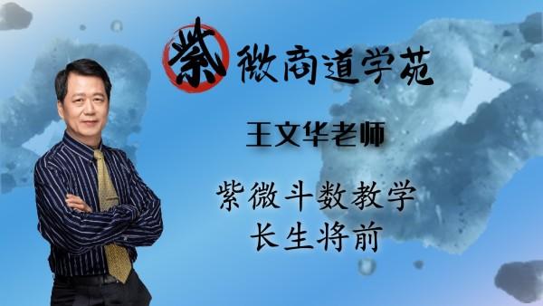 22王文华老师紫微斗数中级篇-长生将前