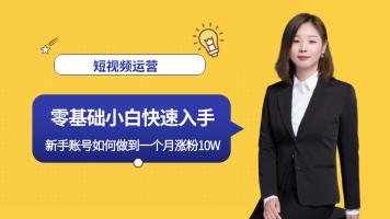 抖音电商 直播带货 抖音短视频 网络营销新媒体自媒体淘宝客快手