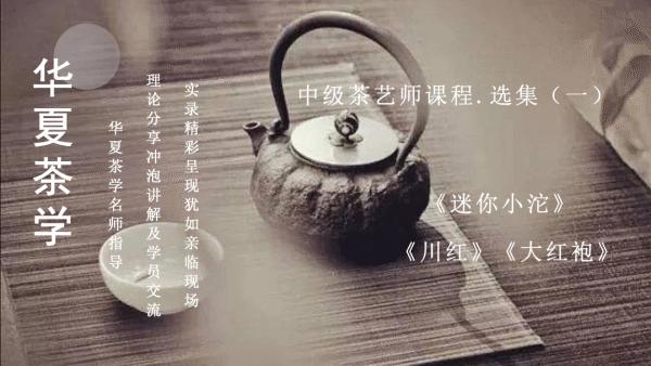 茶艺(师)培训课程——中级茶艺师课程·选集(一)
