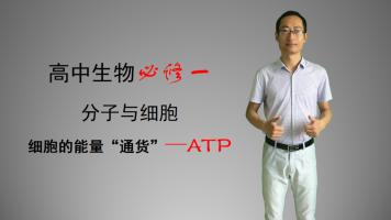 细胞的能量通货——ATP,系统课,高中生物必修一《分子与细胞》