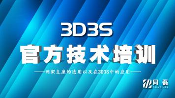 2020年第八期3D3S软件培训