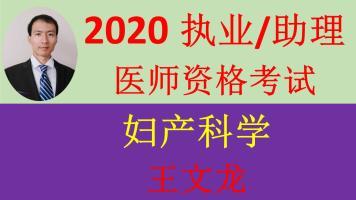 2020精诚医考王文龙-妇产科-执业医师/助理医师资格考试精讲+真题