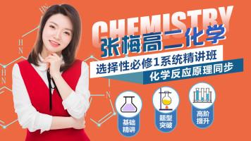 【张梅化学】2023高二化学选修四化学反应原理精讲★配教材+答疑