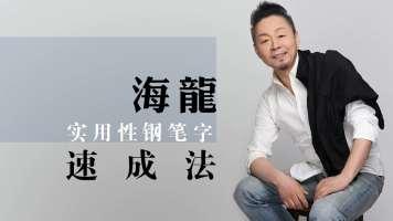 海龙书道实用硬笔行楷行书练字 (注:此视频课程  没有教材!)