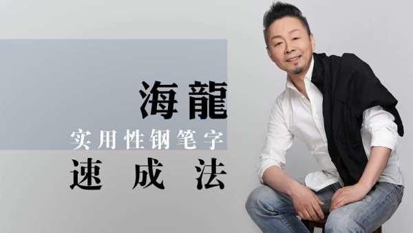 海龙书道实用硬笔书法行楷行书练字 (零基础实用练字速成)