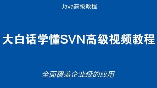 大白话学懂SVN高级视频教程