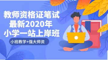 最新2020年教师资格证小学一站上岸班