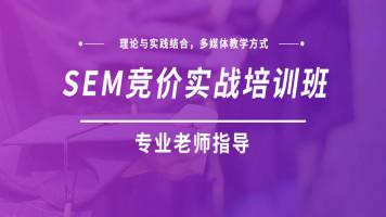 seo网站优化排名实战推广semGoogle谷歌百度排名技术