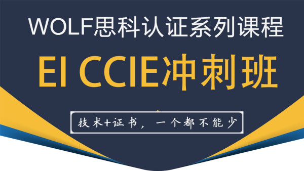 WOLF实验室EI CCIE精品课程