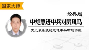 洪磊鑫史上最系统的急进中兵象棋布局讲座·经典版