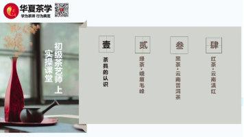 茶艺(师)培训课程—初级茶艺教程试学视频(上)续