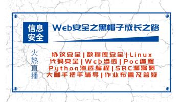渗透/web安全/kali/网络安全/黑客技术/python/攻防/逆向/SRC
