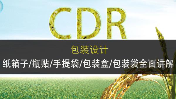 CDR包装盒设计大全【产品盒/纸箱子/礼品盒/化妆品盒/实战课程】