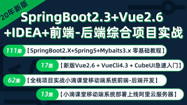 Java20年springboot2.3视频教程spring5/mybatis/vue/cubeui实战