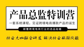 【枫火跨境】产品总监特训营
