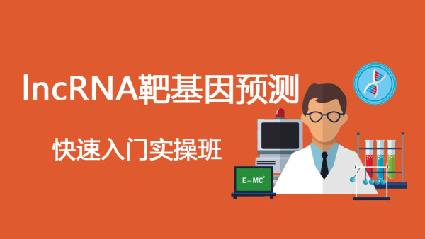 lncRNA靶基因预测