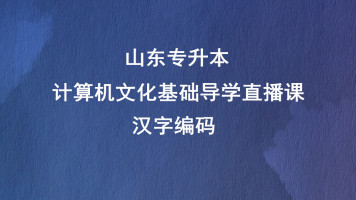 计算机文化基础导学—汉字编码
