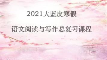2021年大蓝皮寒假语文阅读写作总复习