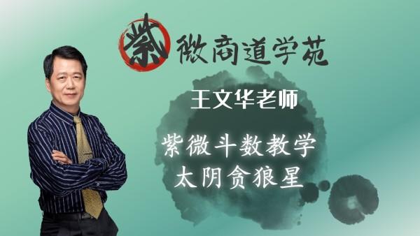 07王文华老师紫微斗数初级篇-太阴贪狼星